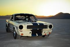 1966 Shelby bg creative